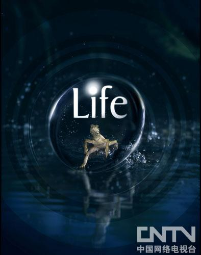 精彩《生命》央视热播